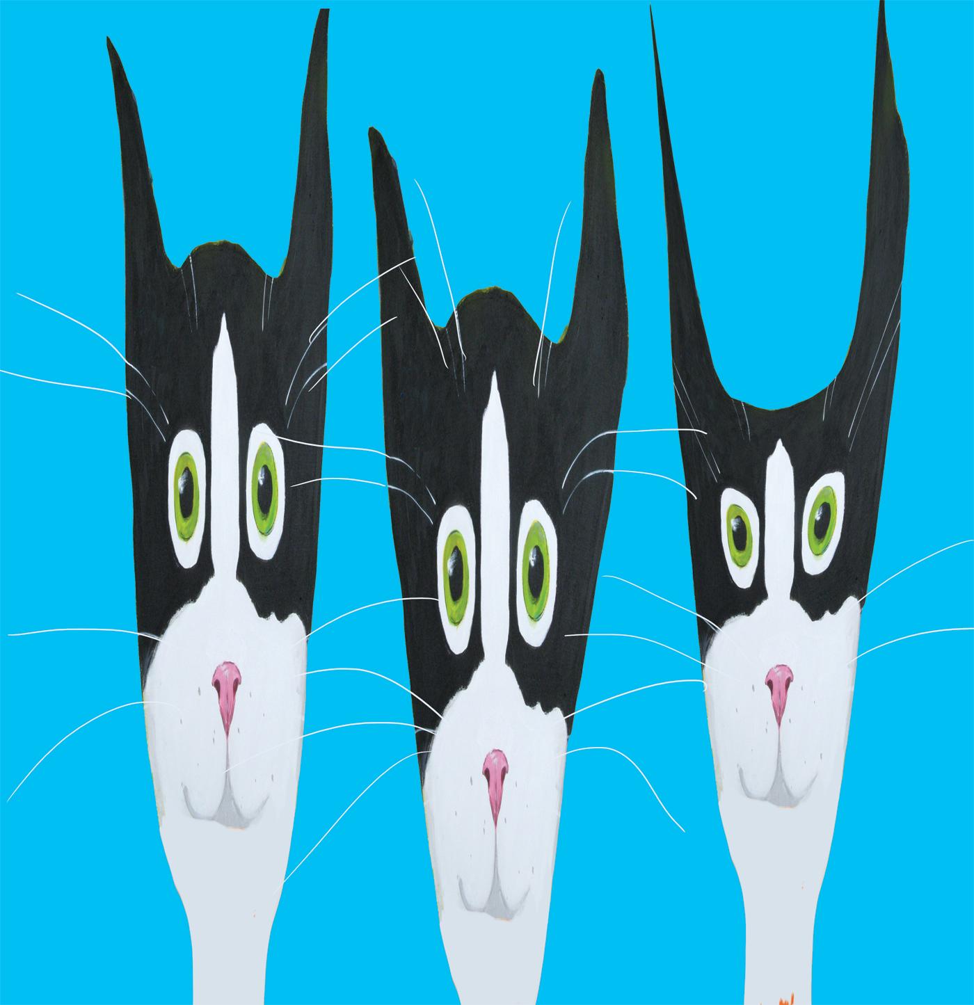 Alison-E_Kurek_Many_Faces_of_Silent_Mylo_Tuxedo_Cat